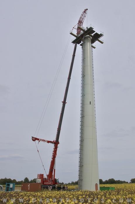 Parc éolien Gournay/Loizé (79) 06DSC_5593-700px.jpg